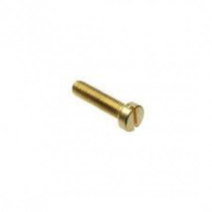 Cheesehead Brass M2 x 20mm CHEESE002x20B