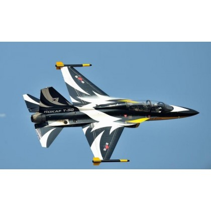T-50 1/5th Scale Jet from T-One Models
