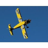 "84"" Turbo Bushmaster ARF kit - White / Blue from Extreme Flight L"